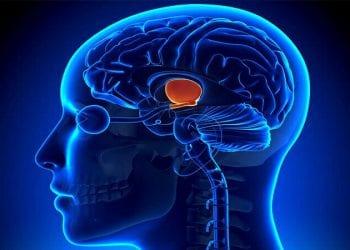 Abnormalnosti hipotalamusa i hipofize kod žena