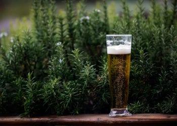 5 razloga zašto je dobro piti pivo !