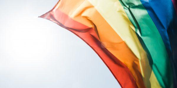 Nova istraživanja pokazuju: Da li geni imaju utjecaj na homoseksualnost?