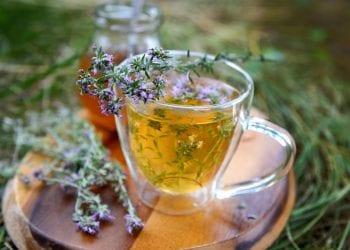 Jeste li znali da je čaj od majčine dušice pun željeza?