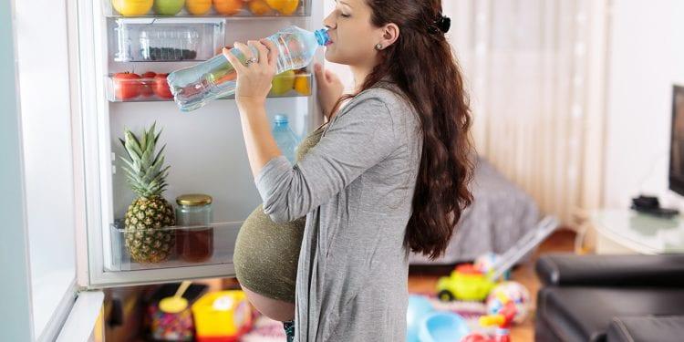 Nutricionista i ginekolog savjetuju U trudnoći ne jedite za dvoje