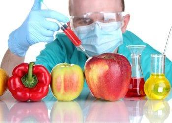 GMO hrana - Kako prepoznati genetski modificirane namirnice?