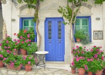 Kućne biljke koje čiste zrak - osvježite svoj prostor prirodnim pročišćivačima!